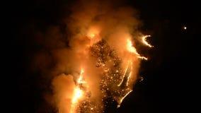 El fuego de la noche en las montañas, la hierba ardiente y los árboles en las rocas en una montaña gorge en la cámara lenta almacen de metraje de vídeo