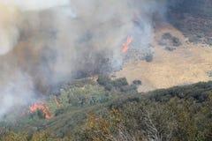 El fuego de la primavera ~ 2013 ~ llamas que compiten con a través del valle Foto de archivo libre de regalías