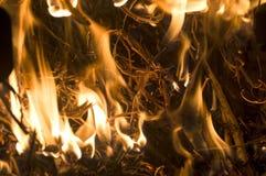 El fuego de las balas ardientes de soja Fotografía de archivo