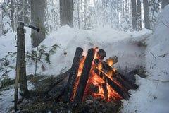 El fuego en el bosque del invierno Imagenes de archivo