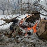 El fuego en el bosque del invierno Imágenes de archivo libres de regalías