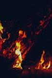 El fuego en el bosque, hoguera Imagenes de archivo