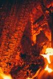 El fuego en el bosque, hoguera Imagen de archivo