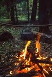 El fuego en el bosque, hoguera, cocinando la comida del campo Fotos de archivo