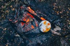 El fuego en el bosque, hoguera, cocinando la comida del campo Imagen de archivo
