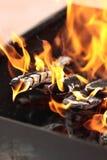 El fuego en la parrilla Fotografía de archivo libre de regalías