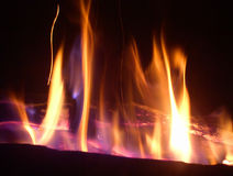 El Fuego - fire. Logs in a fireplace are illuminated by the purple and orange glow of the flame Royalty Free Stock Photography