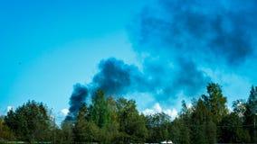 El fuego, humo negro sube sobre el bosque metrajes