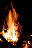 El fuego, llamas se cierra para arriba Fotos de archivo