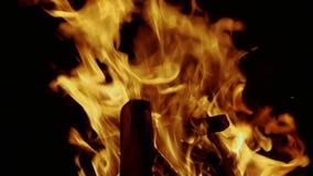 El fuego quema en la oscuridad almacen de metraje de vídeo