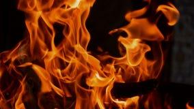 El fuego quema la naranja muy brillante almacen de video