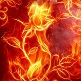 El fuego se levantó Fotos de archivo libres de regalías