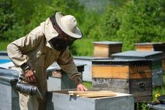 El funcionamiento del apicultor recoge la miel apiary Concepto de la apicultura imágenes de archivo libres de regalías