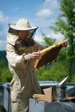 El funcionamiento del apicultor recoge la miel apiary Concepto de la apicultura fotos de archivo