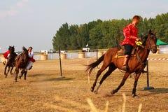 El funcionamiento en los caballos Fotos de archivo libres de regalías