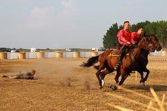 El funcionamiento en los caballos Imagen de archivo libre de regalías