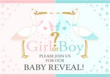 El género del bebé revela el partido Ducha de bebé Fotografía de archivo