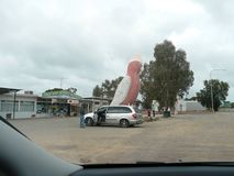 El Galah grande a medio camino a través de Australia en la carretera de Eyre foto de archivo