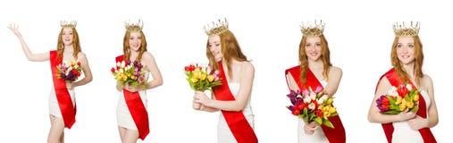 El ganador del concurso de belleza aislado en el blanco Foto de archivo libre de regalías