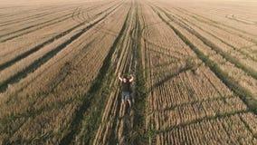 El ganador feliz acertado joven del hombre disfruta en el campo, brazos extendidos Visión panorámica aérea almacen de metraje de vídeo
