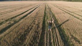 El ganador feliz acertado joven del hombre disfruta y salta en el campo, brazos extendidos Visión panorámica aérea metrajes