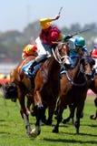 El ganar de la carrera de caballos Imagen de archivo libre de regalías