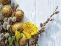 El gatito de las codornices eggs el sauce en un fondo de madera blanco de la decoración natural, alstroemeria de la rama de pascu Imagenes de archivo