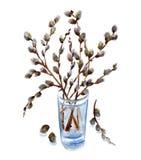 el Gatito-sauce ramifica ramo stock de ilustración