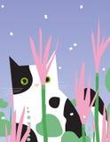 El gato blanco y negro mira a través Imágenes de archivo libres de regalías