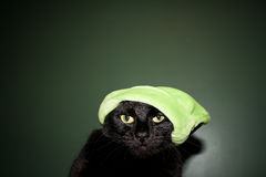 El gato de Grinch Imagenes de archivo