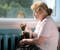 El gato de la caricia de la mujer mayor Foto de archivo libre de regalías