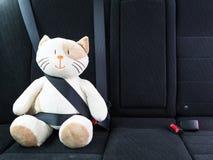 El gato del juguete de la felpa sujetó con el cinturón de seguridad en el asiento trasero de un coche, seguridad en el camino Con foto de archivo