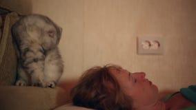 El gato despierta a su señora durmiente almacen de video