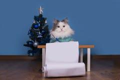 El gato escribe una letra a Santa Claus Imagen de archivo libre de regalías