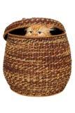 El gato está ocultando en una cesta. Imágenes de archivo libres de regalías