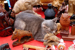 El gato gris divertido lindo que duerme entre la decoración antigua se opone Fotos de archivo libres de regalías