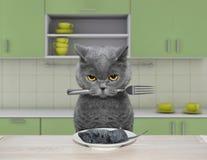 El gato hambriento va a comer un ratón libre illustration