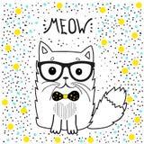 El gato lindo con los vidrios, diseño de la camiseta para las muchachas vector el él-gato del ejemplo Cartel romántico del dibujo Imagen de archivo libre de regalías
