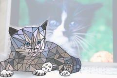 El gato polivinílico bajo se sienta en el ordenador portátil Imagenes de archivo