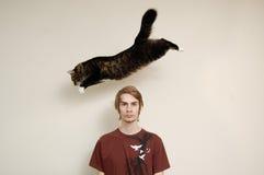 El gato que salta sobre la pista de un hombre Imágenes de archivo libres de regalías