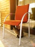 El gato se está sentando en el pórtico en el día de verano Imagen de archivo