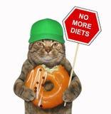 El gato sostiene una muestra divertida y un buñuelo anaranjado ilustración del vector