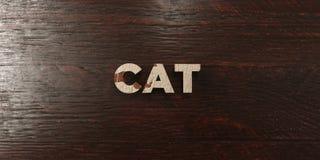 El gato - título de madera sucio en arce - 3D rindió imagen común libre de los derechos Imagen de archivo libre de regalías