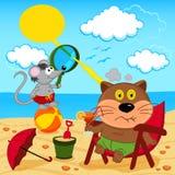 El gato y el ratón engañan alrededor con en la playa Imagen de archivo libre de regalías