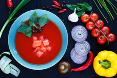 El gazpacho español de la sopa con los salmones y la albahaca se va en placa azul fotos de archivo libres de regalías
