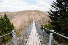 El Geierlay es puente colgante Foto de archivo libre de regalías