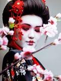 El geisha bonito joven en kimono con Sakura y la decoración roja diseñan en el fondo blanco Imagen de archivo libre de regalías