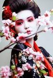 El geisha bonito joven en kimono con Sakura y la decoración roja diseñan en el fondo blanco Imagen de archivo