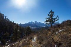 El gemelo del ` s de Colorado enarbola en Sunny Winter Day imagen de archivo