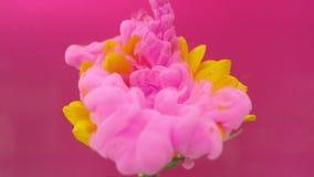 El girasol y la tinta rosada se nublan la infusión en el agua almacen de video